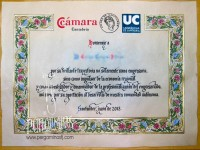 Diploma CEMIDE
